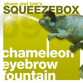 chameleon eyebrow fountain (69)