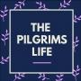 Artwork for The Pilgrims Life - John Hanneman
