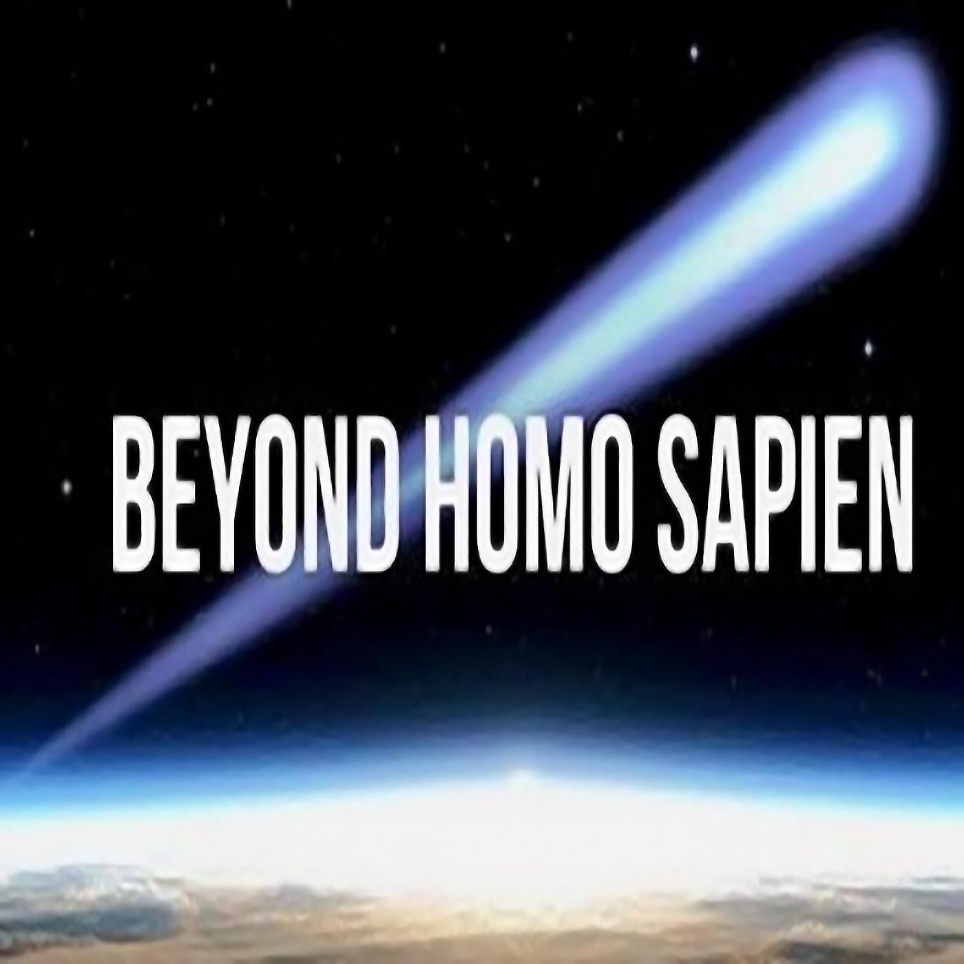 Beyond Homo Sapien show art