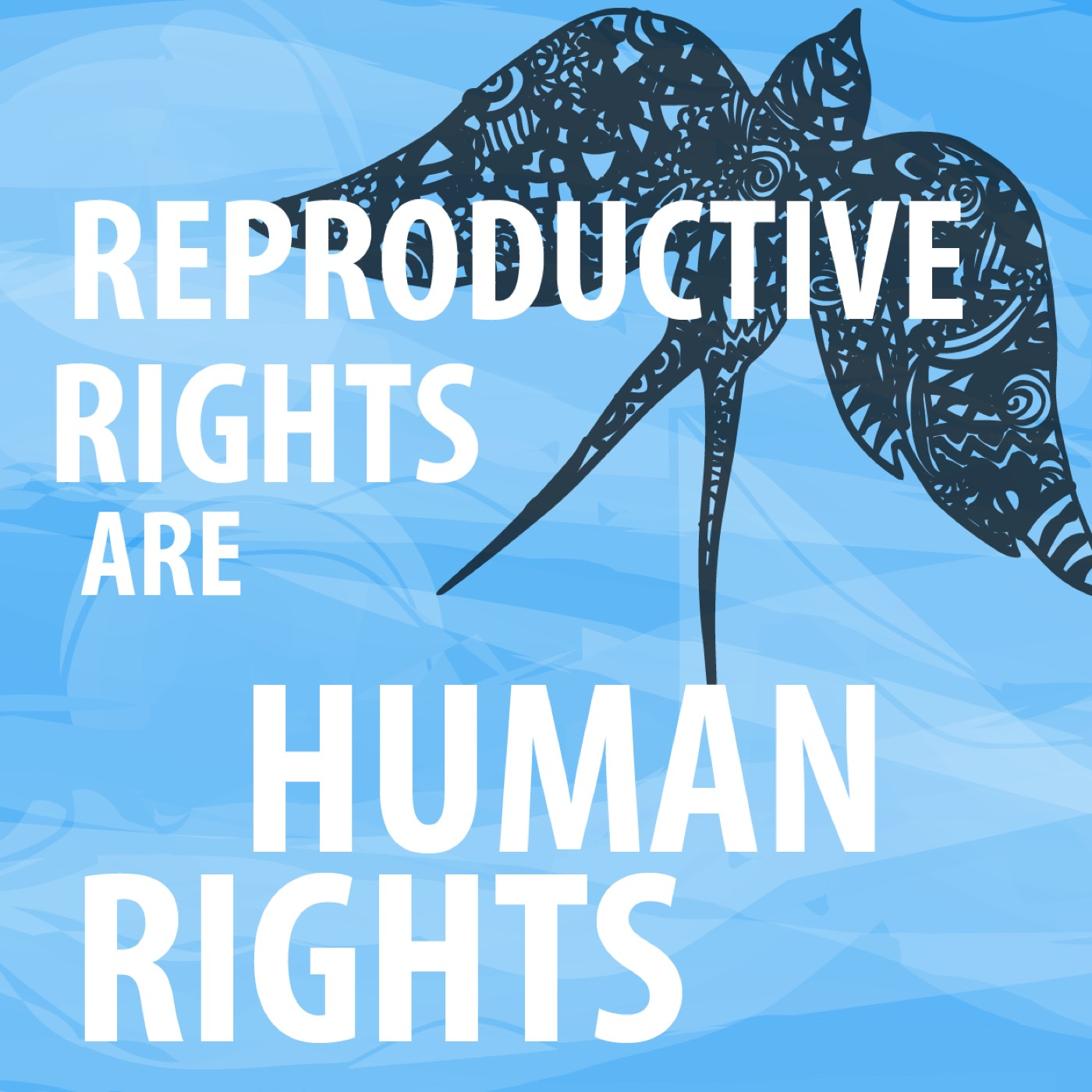 (2015/04/24) The history and current state of abortion (Reproductive Justice)