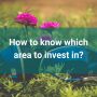 Artwork for How to know which area to invest in?