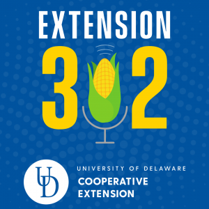 Extension302