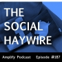 Artwork for Social Haywire