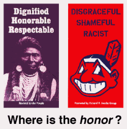 Insult to Injury? American Indian Sports Mascots