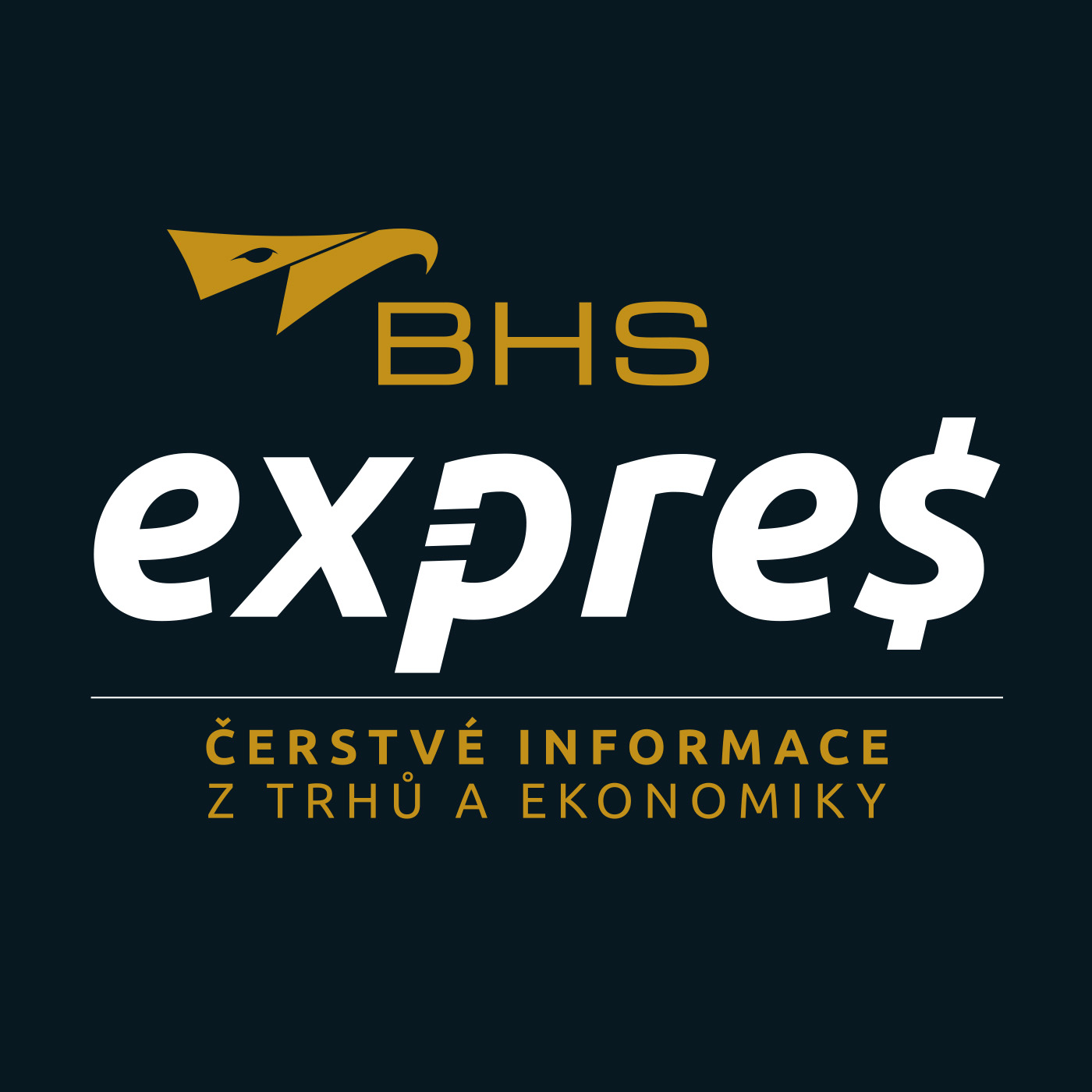 BHS Expres show art