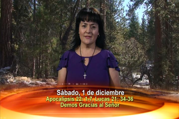 Artwork for Dios te Habla con Leticia Diaz; Tema el hoy: Demos gracias al Señor.