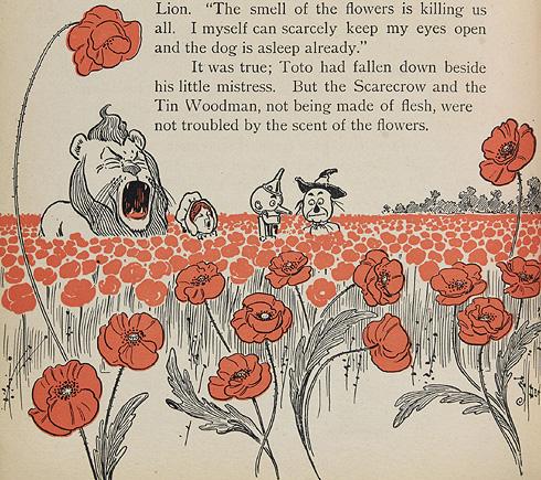 Wonderful Wizard of Oz - Chapter 8