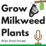 Artwork for GMP 008: Multi-State Milkweed Status