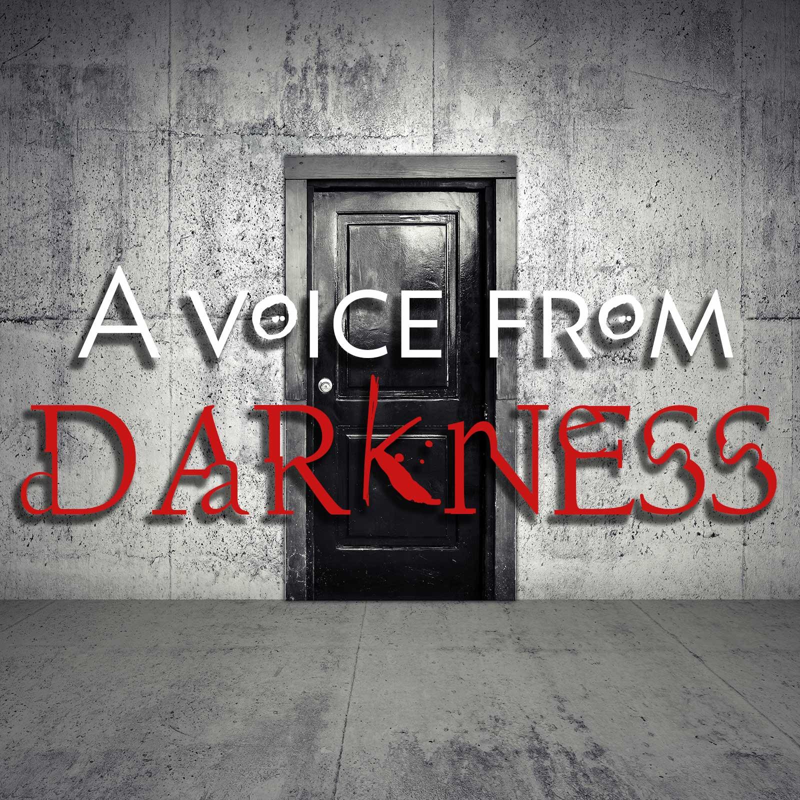 Kuvahaun tulos: a voice from darkness