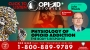 Artwork for Pathophysiology of Opioid Use Disorder w/ Dr. John Woods | OPIOID STORIES | KUDZUKIAN