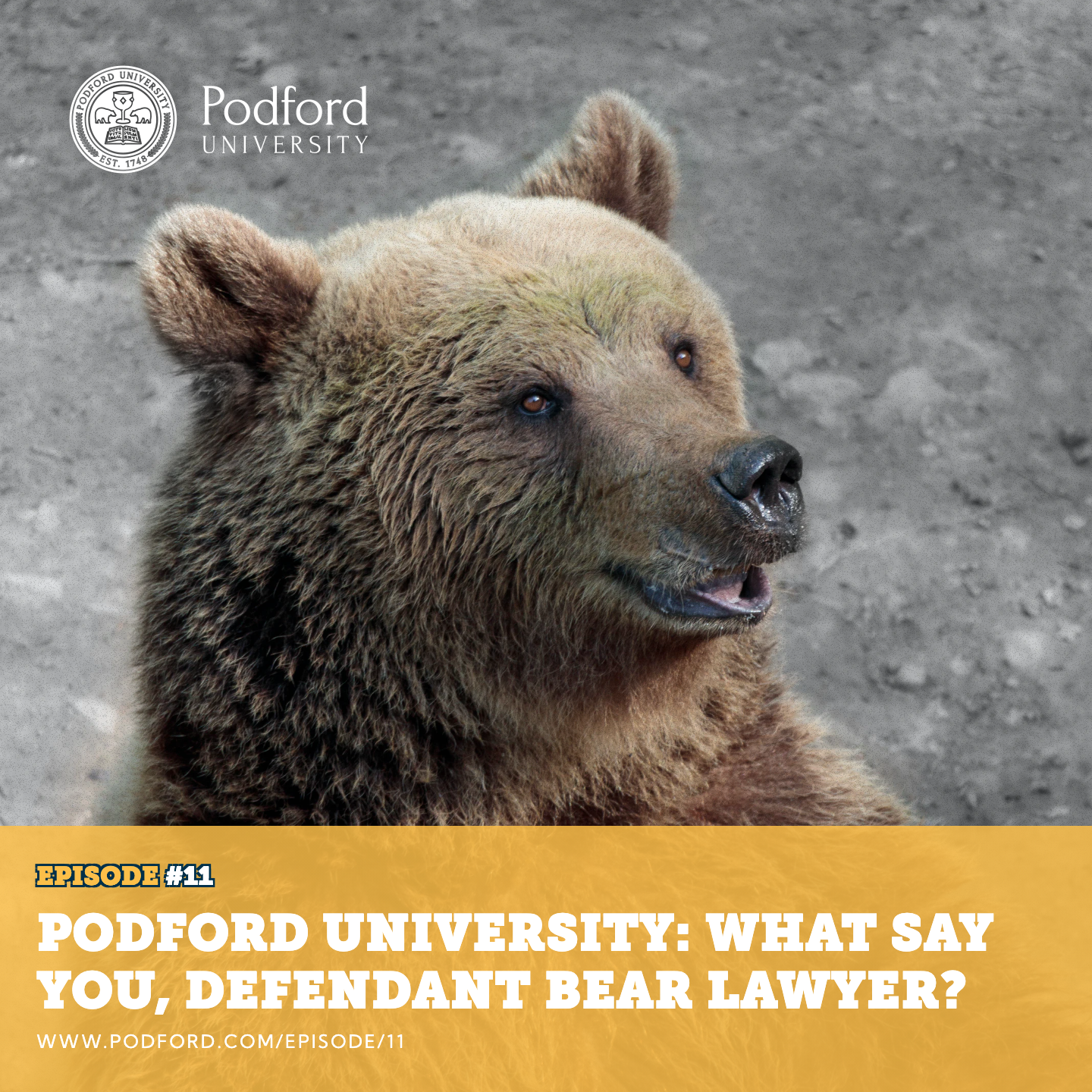 Podford University: What Say You, Defendant Bear Lawyer?