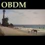 Artwork for OBDM329 - Robert Power Plant
