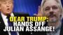 Artwork for President Trump: HANDS OFF Julian Assange!