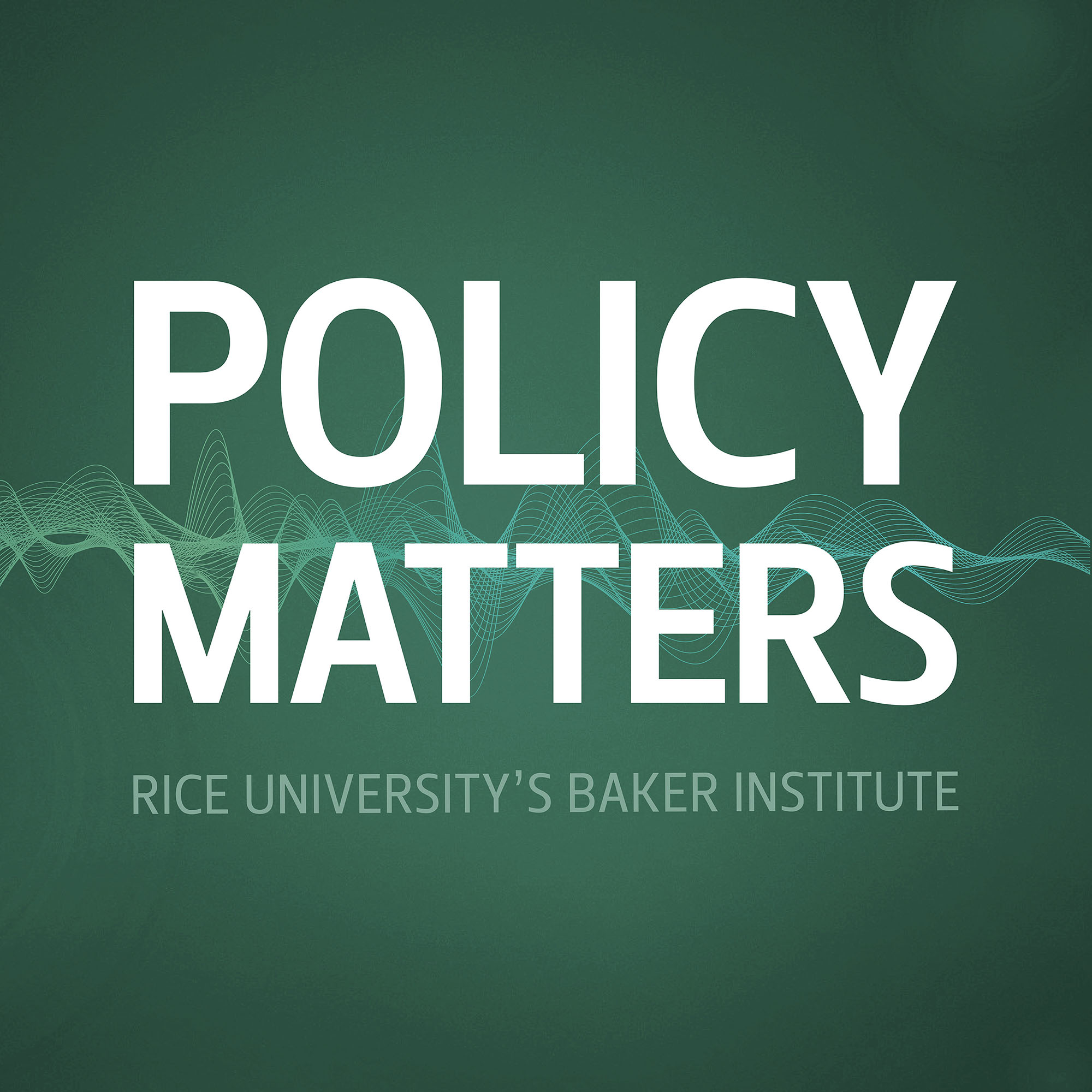 Policy Matters show art