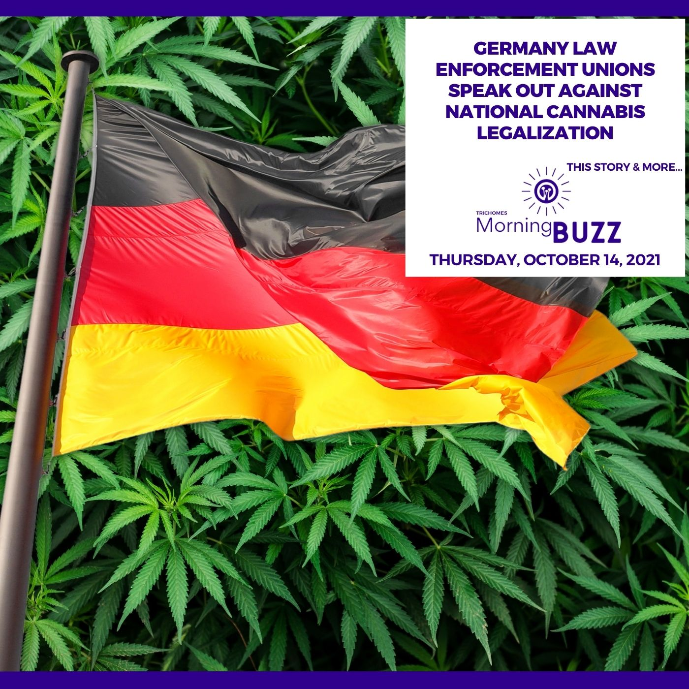 Law Enforcement Unions In Germany Speak Out Against National Cannabis Legalization show art
