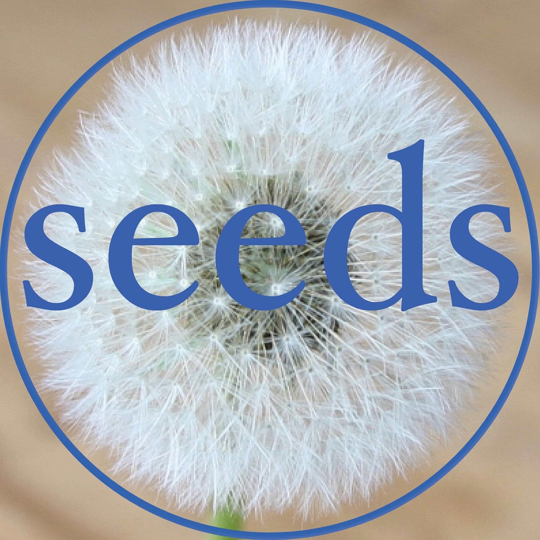 Seeds show art