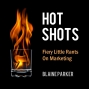 Artwork for HOT SHOTS REPRISE: More Blowing Holes In Nonsense From The Experts