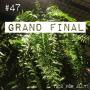 Artwork for 47. Grand Final. Om ormbunkar, airplants och ett stort hejdå
