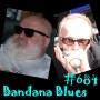Artwork for Bandana Blues #684 Conceptual Continuity
