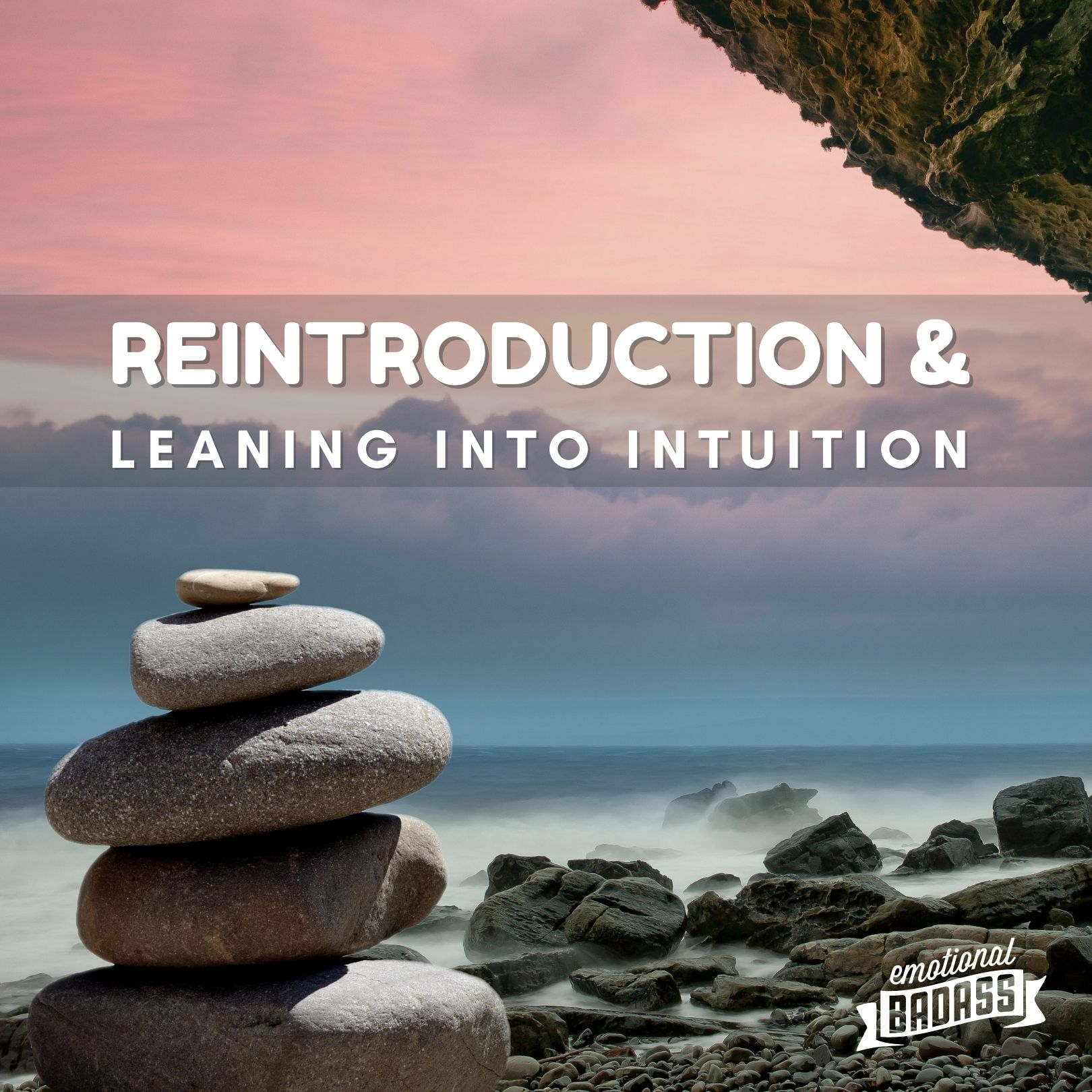 Reintroduction, Healing, Learning and Leaning into intuition