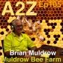 Artwork for Ep105: Brian Muldrow - Muldrow Bee Farm, SETX Beekeepers Association