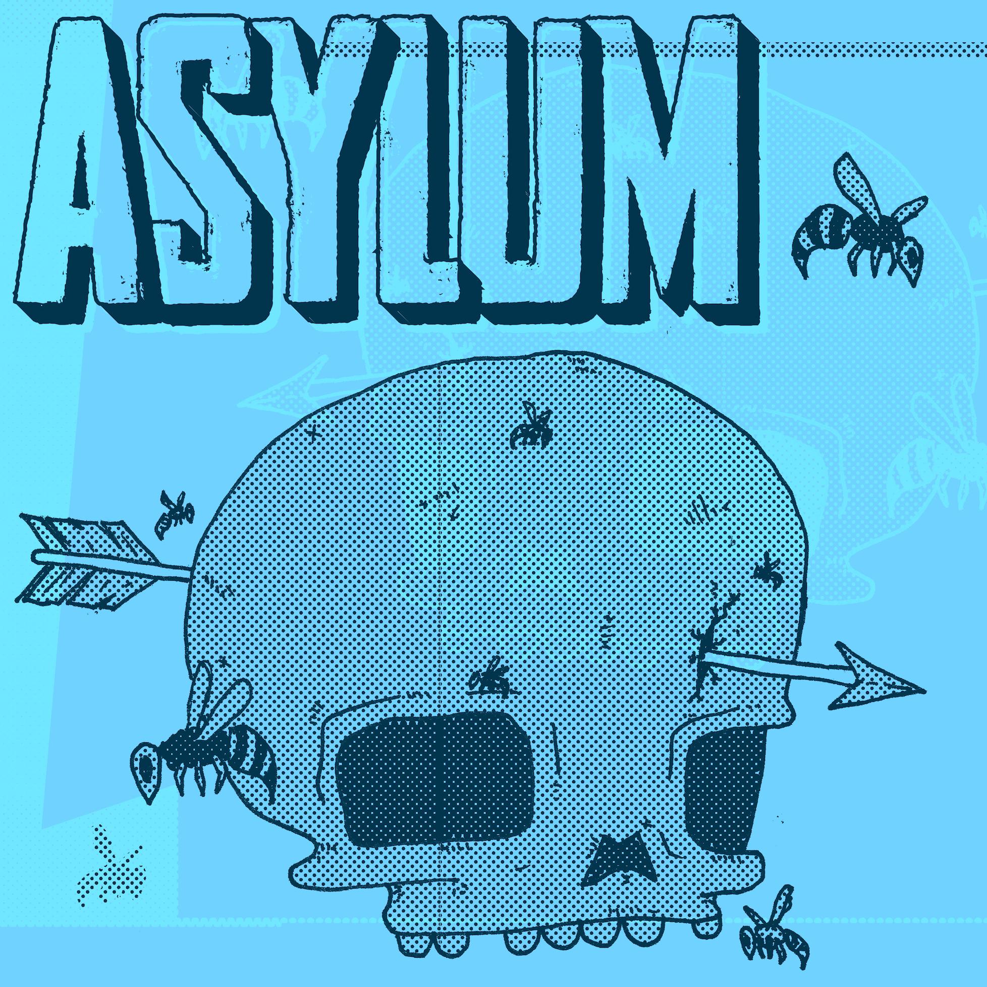 XP ACADEMY ASYLUM