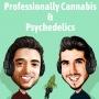 Artwork for Mitchell Osak, Partner & Cannabis Advisory Lead at MNP