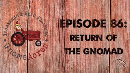 Artwork for Ep 86: Return of the Gnomad