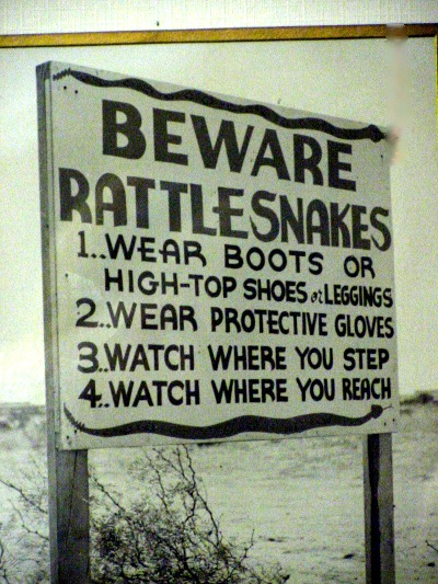 """""""Crowded House of Rattlesnakes"""" - Deedle's Housecleaning, Part 3"""