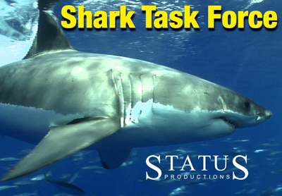 Welcome to the Shark Task Force