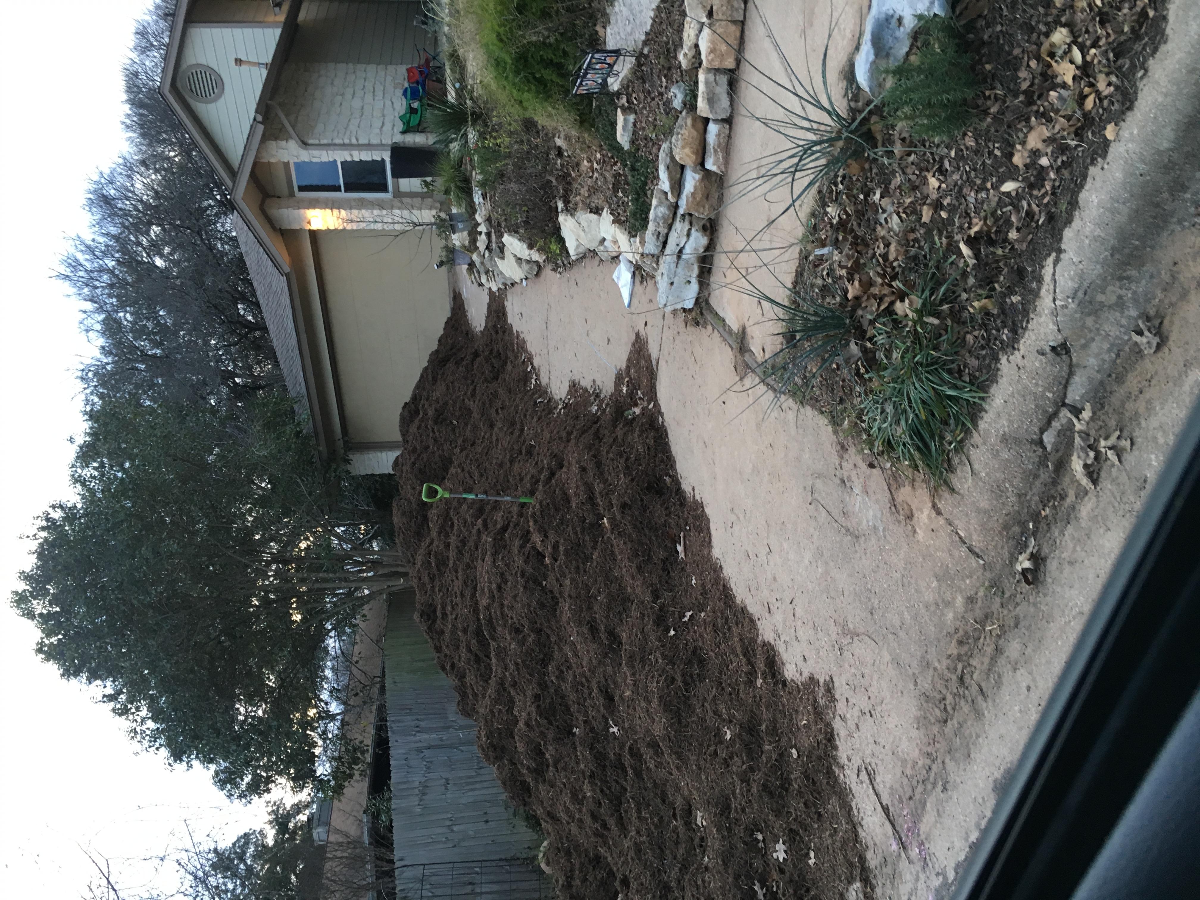 Horticulturati: The Mulch Episode