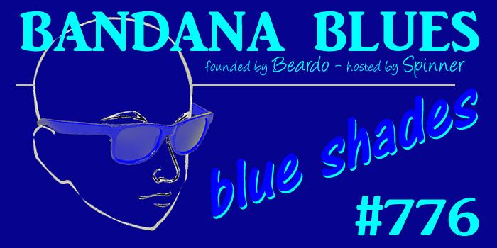 Eyeglasses Original Penguin The Burks Storm Blue STORM BLUE