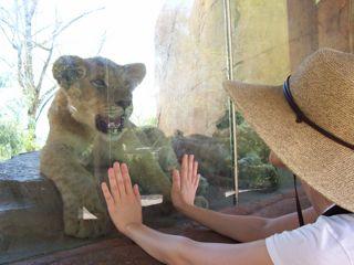 #60 San Diego Wild Animal Park
