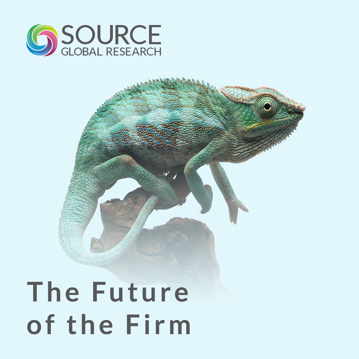The Future of the Firm show art