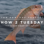 Artwork for HOW 2 TUESDAY #22 - How To Cook Snapper On A Half Shell