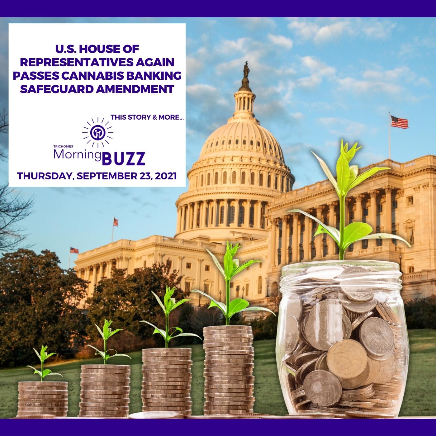 U.S. House Of Representatives Again Passes Cannabis Banking Safeguard Amendment show art