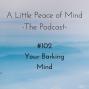 Artwork for Episode 102 - Your Barking Mind