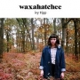 Artwork for 4-26-15 -- Waxahatchee and Weed