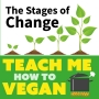 Artwork for The Stages of Change