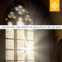 Artwork for Life of Worship | Discerning the Spiritual Health of the Church Episode 02