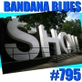 Artwork for Bandana Blues #795 - On With The Show