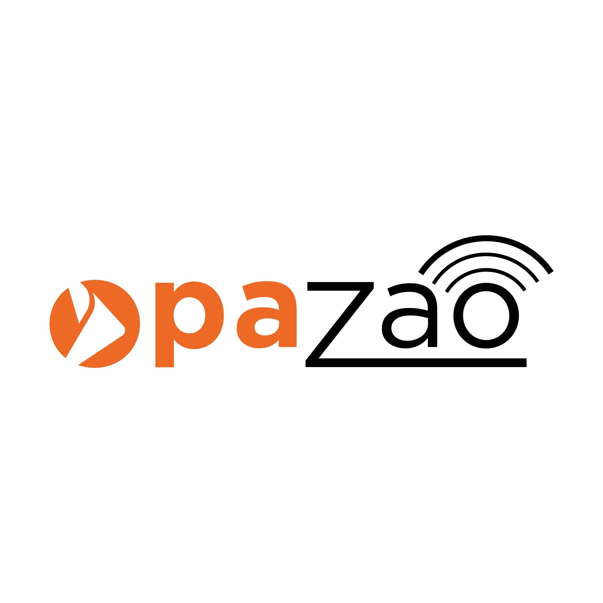 Opazao show art