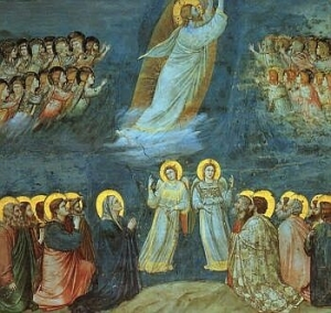Homily - Solemnity of the Ascension of the Lord: