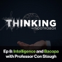 Artwork for Intelligence and Bacopa ft. Con Stough || Episode 8