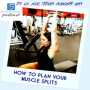Artwork for Episode #73: How to Plan Your Muscle Splits