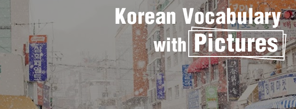 Korean Vocabulary with Pictures - #8 (grocery store, motorcycle, snow, sign, winter)