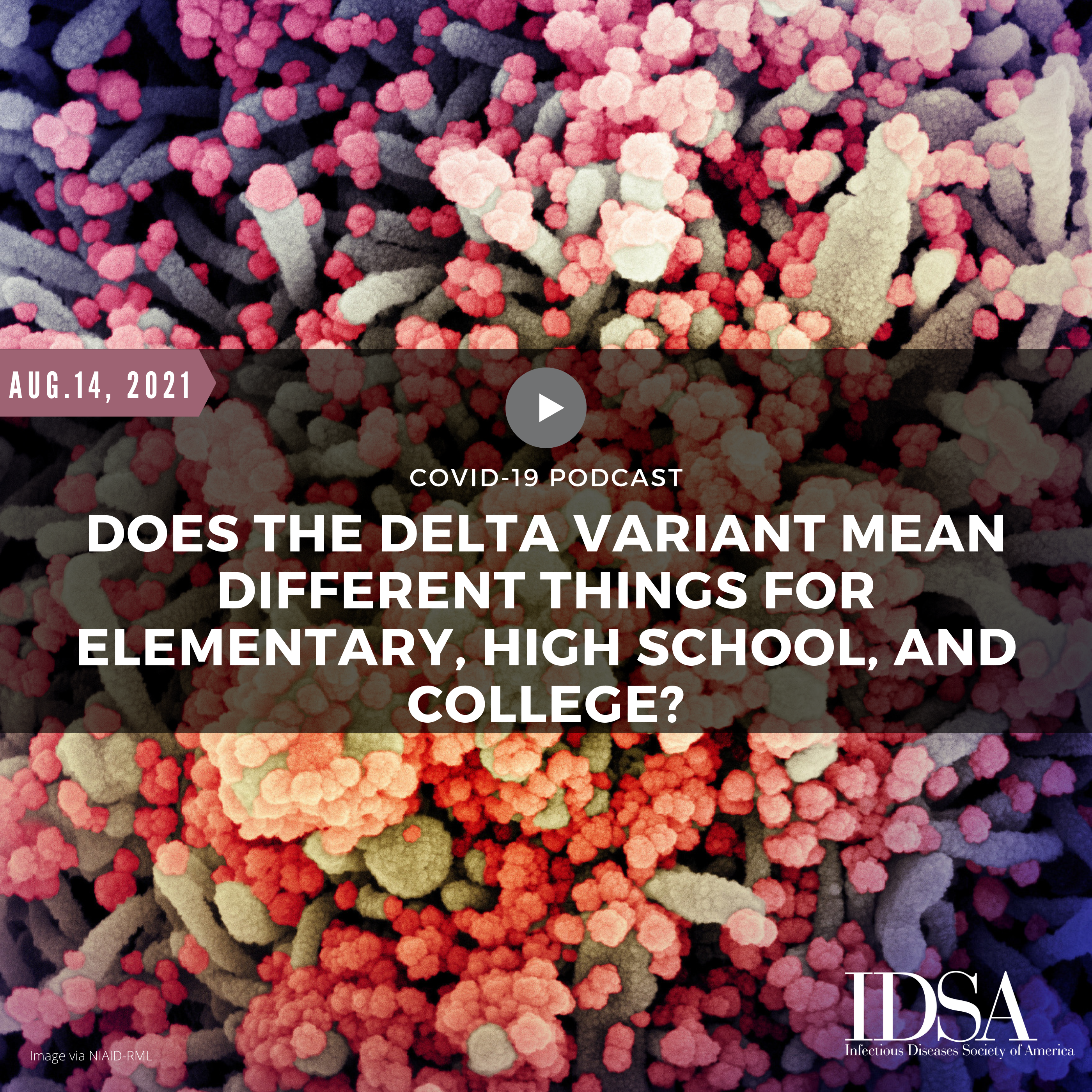 Does the Delta Variant Mean Different Things for Elementary, High School, and College?