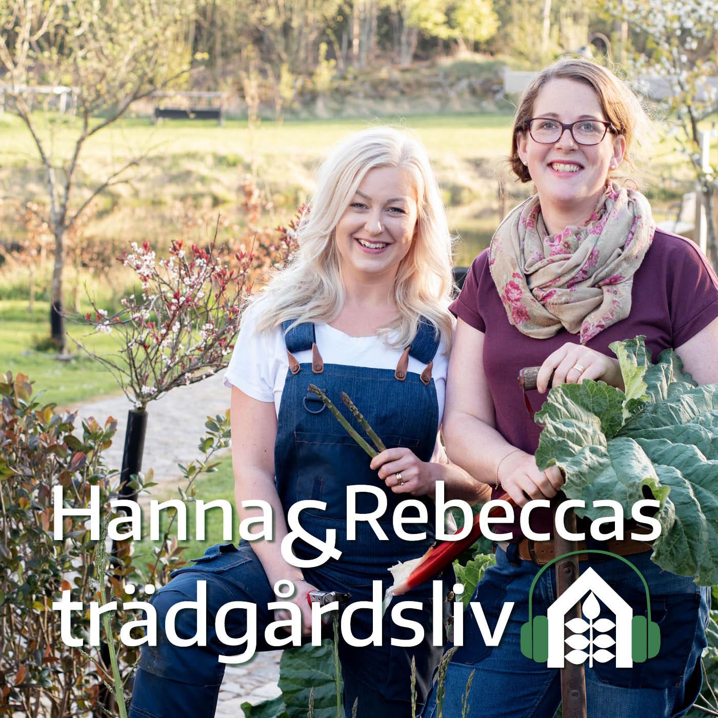 Hanna och Rebeccas trädgårdsliv show art