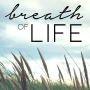 Artwork for Breath of Life