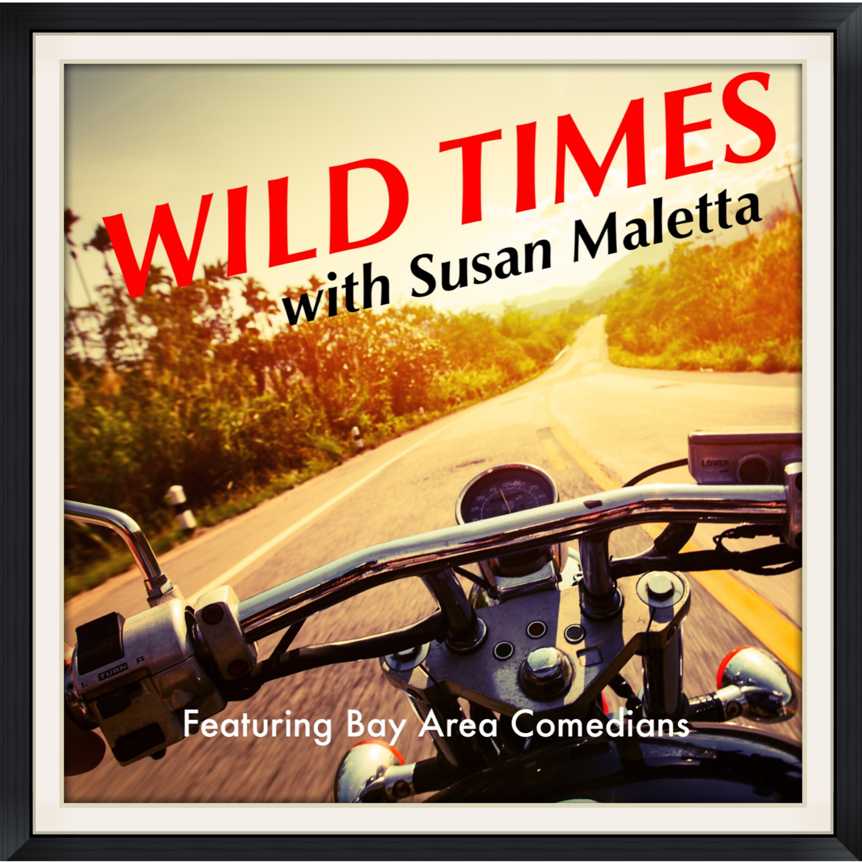 Wild Times with Susan Maletta show art